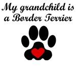 Border Terrier Grandchild
