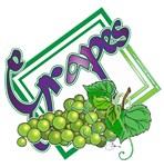 NEW!  Grapes (green)