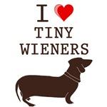 Tiny Wiener Dacshund