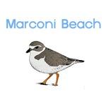 Marconi Beach T-Shirts