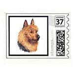 Creative Aussie Terrier Post Cards Note Cards STAM