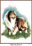 Sheltie Watch Unique Gifts & Products