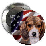 Beagle Dog Buttons and Magnets