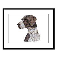 German Shorthair Pointer Dog Framed Prints Posters
