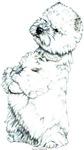 West Highland White Terrier Westie Portrait Gifts