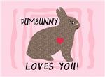 DUMBUNNY-SOMEBUNNY