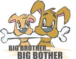 Big BOTHER