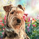 Airedale Painting