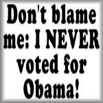 Don't blame me. I NEVER voted for Obama!