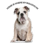 BullDog Home