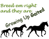 Growing Up Gaited