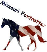 Missouri Foxtrotter Flag
