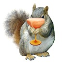 Squirrel Drink