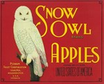 Snow Owl Apples