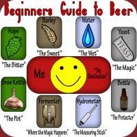 Beginner's Guide to Beer