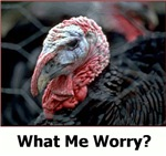What Me Worry?