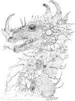 Steveg's Dragon