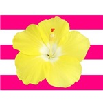 Yellow Hibiscus on Pink Stripes