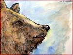 Bear, wildlife, art,