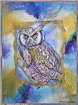 Owl! wildlife, bird art!