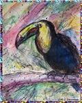 Toucan! Wildlife, bird art!