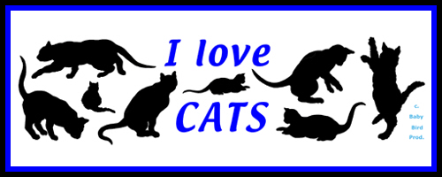CAT T-SHIRTS FOR CAT LOVERS