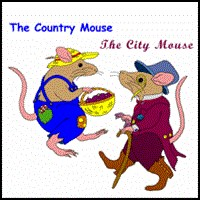 COUNTRY MOUSE & CITY MOUSE ON KIDS T-SHIRTS