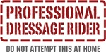 Professional Dressage Rider