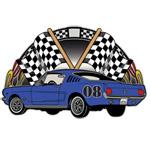 Race Car Flags