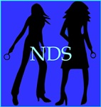 Nancy Drew Sleuths: Blue NDS