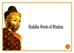 Buddha Buddhist Quotes of Meditation