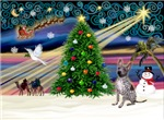 CHRISTMAS MAGIC<br> & Xoloitzcuintle