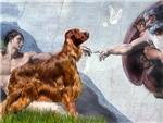 CREATION OF MAN<br>& Irish Setter