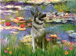 WATER LILIES<br>& Norwegian Elkhound