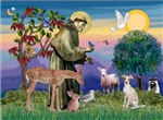 SAINT FRANCIS<br> & Italian Greyhound