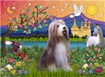 FANTASY LAND<br>& Bearded Collie (brown)