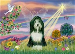 CLOUD ANGEL<br>& Bearded Collie (slate)