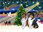 CHRISTMAS MAGIC<br>& 2 Collies