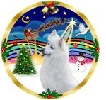 CHRISTMAS MUSIC #3<br>& American Eskimo