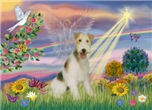 CLOUD ANGEL<br>& Wire Fox Terrier