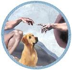 CREATION OF<br>the Yellow Labrador