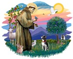 St. Francis #2 &<br> Boston Terrier