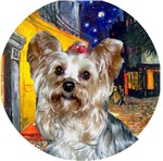 Yorkshire Terrier #13<br>Terrace Cafe