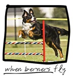 When Berners Fly!