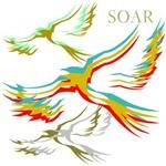 OYOOS Birds Soar design