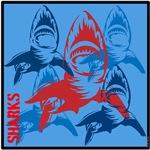 OYOOS Sharks design