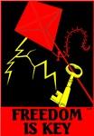 Freedom is Key™: TARGET GOLDMAN SACHS™