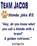 BD- Team Jacob- Blonde Joke 2