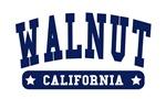 Walnut College Style