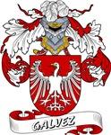 Galvez Family Crest / Galvez Coat of Arms